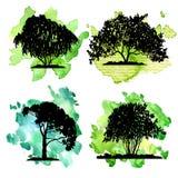 Vector set of deciduous trees Stock Photo