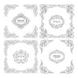 Vector set decorative floral elements Royalty Free Stock Image