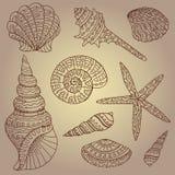 Vector set of decorative seashells Stock Photo