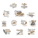 Vector set of Dessert Spices logos, labels, badges Stock Image