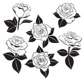 Vector set of detailed, isolated outline Rose buds sketches with leaves silhouettes in black color. Stock Photography