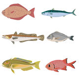 Vector set of difference kind of fish, river and sea food.  Stock Photography