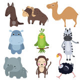 Vector set of different african animals. Set of different african animals on white background Royalty Free Stock Photos