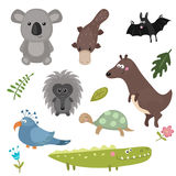 Vector set of different animals of Australia. Stock Image
