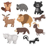 Vector set of different animals of North America. Stock Photography