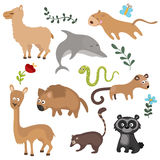 Vector set of different animals of South America. Royalty Free Stock Photo