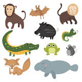 Vector set of different animals of South America. Stock Photos