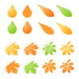Vector set of different autumn leafs Royalty Free Stock Photo