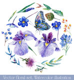 Vector set of different blue, lilac flowers for design. Stock Photography