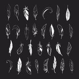 Vector set of different hand drawn feathers on. Decorative Feather vector set. Hand drawn illustration royalty free illustration