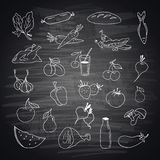 Vector set of different hand drawn food
