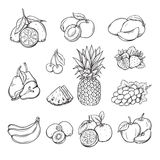 Vector set of different hand drawn fruit Royalty Free Stock Photography
