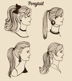 Vector set of different ponytail types Stock Photo