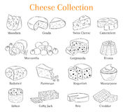 Vector set of different types of cheese, hand drawn illustration isolated on chalkboard background. Royalty Free Stock Photo