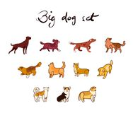 Vector set of dog in cartoon style. Isolated on white background Stock Images