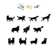Vector set of dog, silhuette. Cartoon style. Vector set of dog, silhuette, isolated on white background. Cartoon style Stock Image