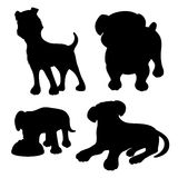 Vector set. Dogs. Royalty Free Stock Photography