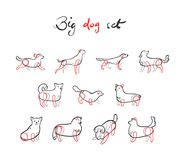 Vector set of dogs in sketch style. Isolated on white background Stock Image