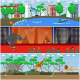 Vector set of dolphinarium, circus and zoo interior flat posters Royalty Free Stock Images