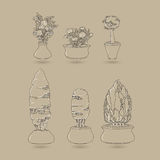 Vector set of doodle house plants in ceramic pots. Stock Photo