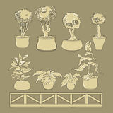Vector set of doodle house plants in ceramic pots. Royalty Free Stock Image