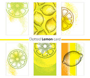 Vector set with dotted lemon cards, lemon slice and stripes isolated on white background. Stock Photography