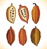 Vector set with drawn  cocao beans. Beauty collection Stock Images
