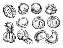 Vector set of dumplings. Vintage sketch illustration Stock Photos