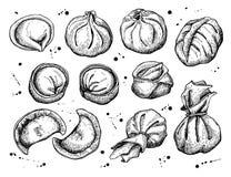 Vector set of dumplings. Vintage sketch illustration. Royalty Free Stock Photos