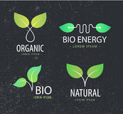 Vector set of eco logos, leaves, organic Stock Photo