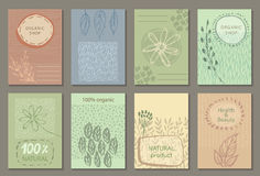 Vector set of eco nature labels or business card templates. Flyers designs for organic, natural, healthy products. Ecological posters royalty free illustration