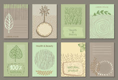 Vector set of eco nature labels or business card templates. Flyers designs for organic, natural, healthy products. Ecological posters stock illustration