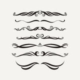 Vector set of elegant curls and swirls. Elements for design. Stock Photo