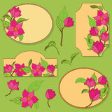 Vector set of elements with flowers Royalty Free Stock Photography