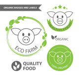 Vector set emblems of eco farm and natural food. Organic badges and labels. Vector illustration Stock Photo