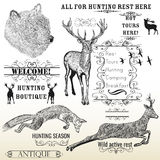 Vector set of engraved hand drawn animals deer, bear, fox and ca Royalty Free Stock Photos
