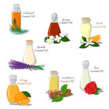 Vector set of Essential Oils Stock Photo