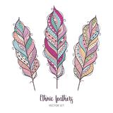 Vector set of ethnic feathers. Decorative colorful feather. Royalty Free Stock Photos