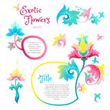 Vector set with exotic flowers in Chinese style. Vector set with fantastic exotic flowers in Chinese style. Luxury ornament. Bright colorful floral illustration Royalty Free Stock Photos