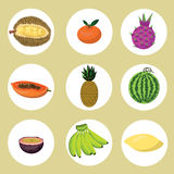 Vector: set of exotic fruits Stock Photo
