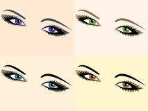Vector set of eye images of different colors. Four images of black eyes, brown, blue and green Royalty Free Stock Photography