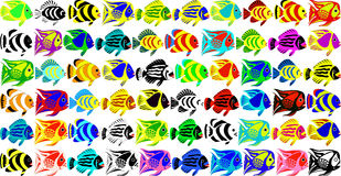 Vector set of 60 fantastic tropical fishes. Drawn in style the cartoon film vector illustration