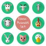 Vector set of farm or domestic animals flat icons. On green background Royalty Free Stock Photo