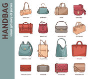 Vector set with fashion bags. Vector set with types of bags, clutches and purses. Collection of modern fashion female accessory. Fashionable and trendy handbags Stock Images