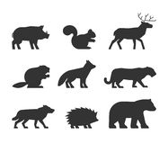 Vector set of figures of wild animals. Stock Image