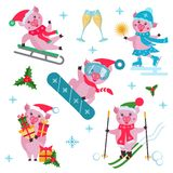 Vector set of flat Christmas pig in different situations. vector illustration