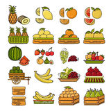 Vector set of flat design cute colorful fruit icon. Stock Image