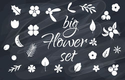 Vector set of flat flower silhouette pattern. Royalty Free Stock Images