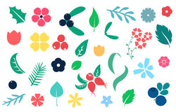 Vector set of flat flower silhouette pattern. Vector set of flat flowers, leaves and berries icons silhouette isolated pattern. Cute bright color design for Stock Image