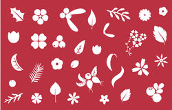 Vector set of flat flower silhouette pattern. Royalty Free Stock Photo